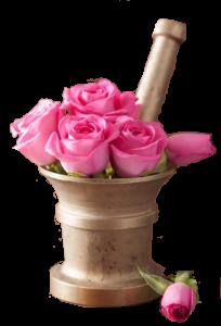 roza-4